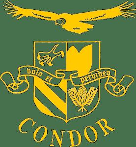 CONDOR_logo.png